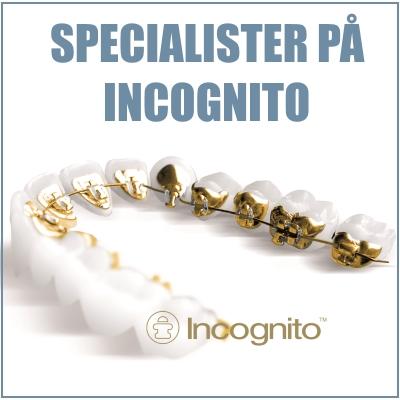 Specialister på Incognito